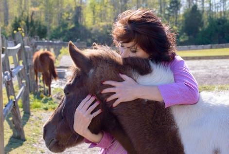 3Virginia Horse Farm050617